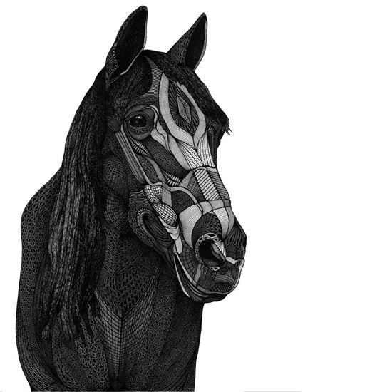 Picture of Horse art by Deltakappadesign