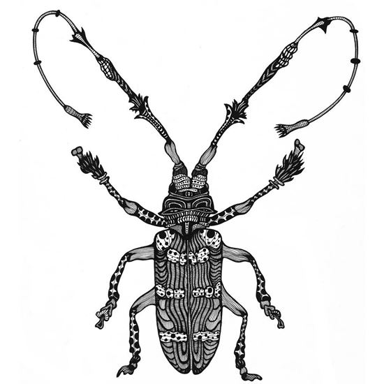Picture of Beetle art by Deltakappadesign
